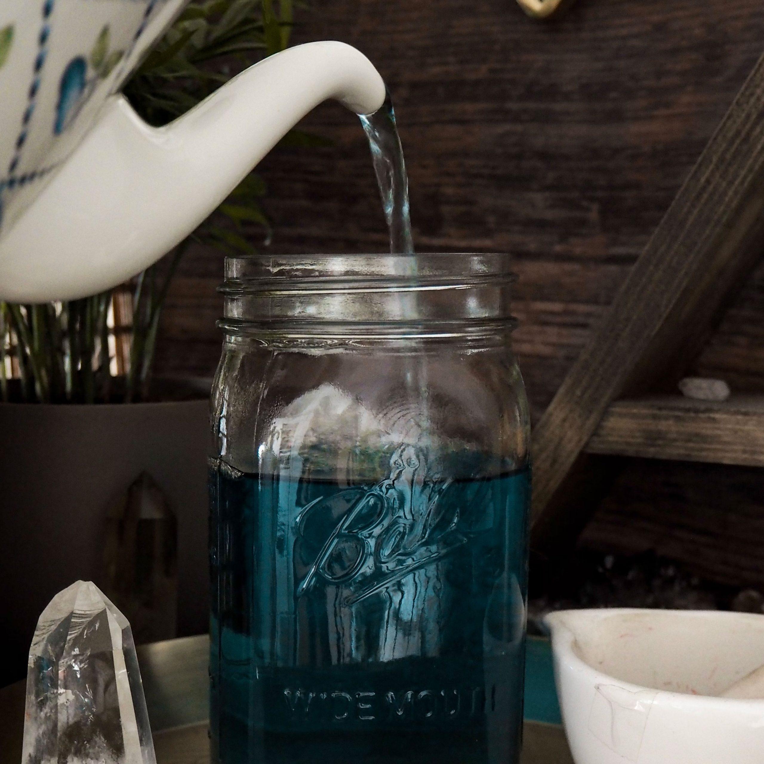 Blue Tea Plant Magic